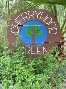 Cherrywood Green Park